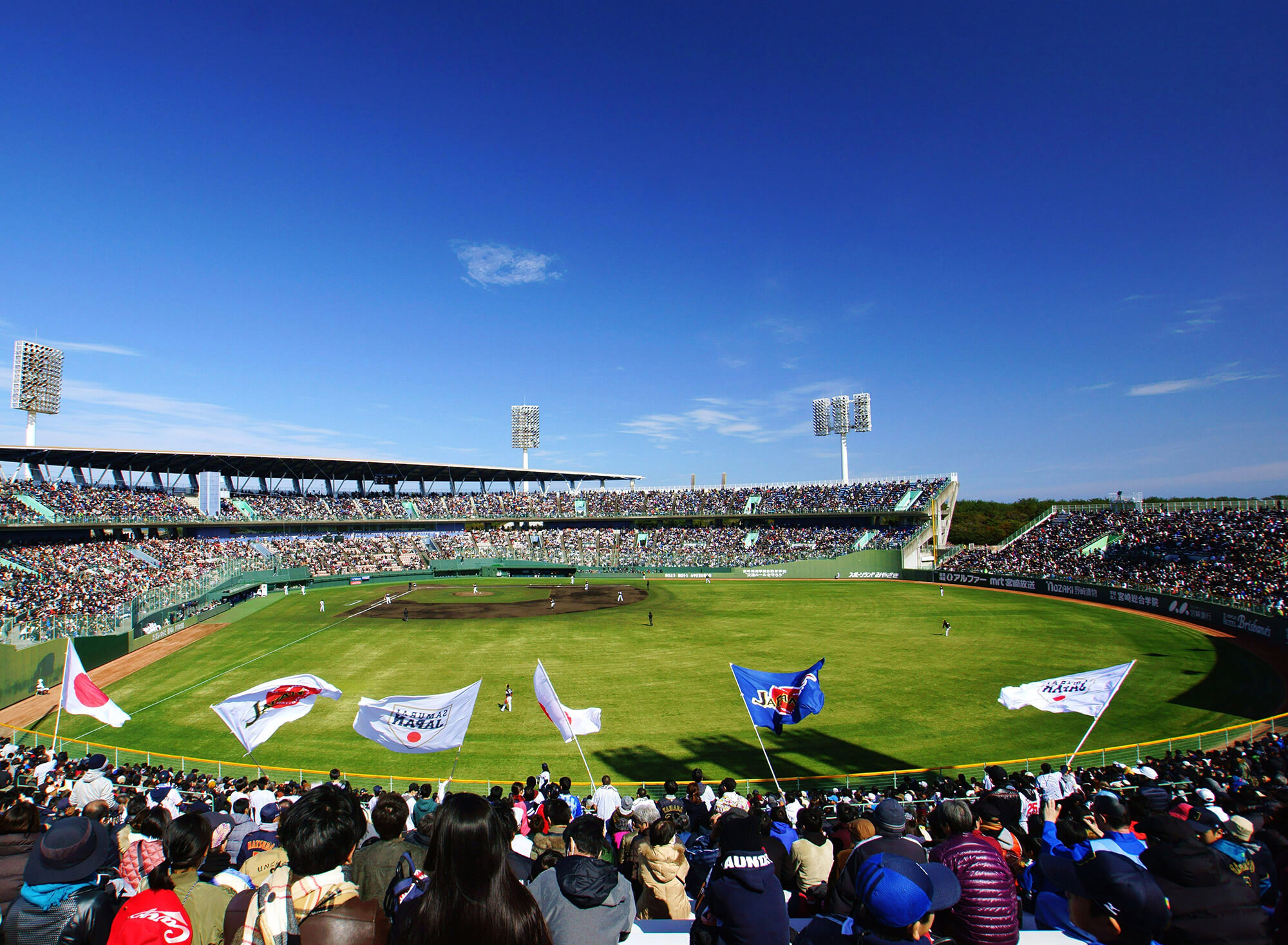 宮崎県野球協議会